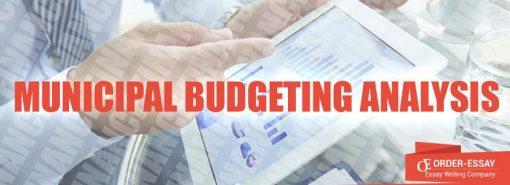 Municipal Budgeting Analysis Free Financial Essay Sample