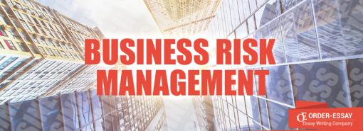 Business Risk Management Free Sample Essay