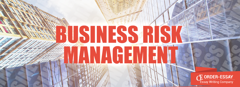 Business Risk Management Free Sample Essay