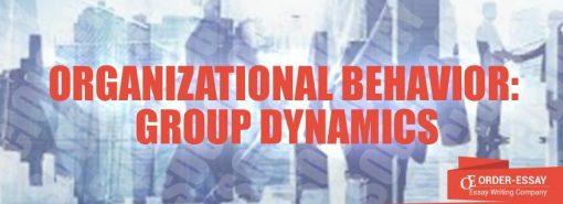 Organizational Behavior: Group Dynamics Essay Sample
