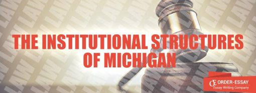 The Institutional Structures of Michigan