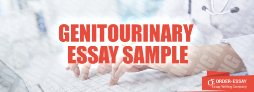 Genitourinary Essay Sample