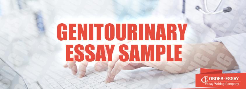 Genitourinary Essay Sample